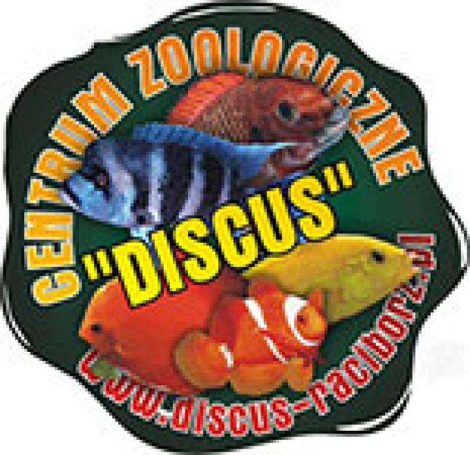 sklep-zoologiczny-discus