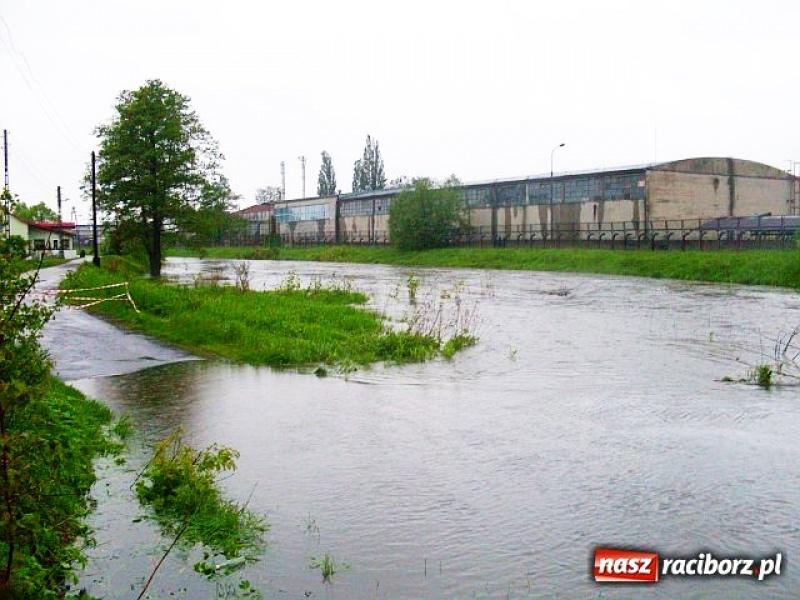 Suchy zbiornik przeciwpowodziowy dla Kuźni ma kosztować 61,5 mln zł