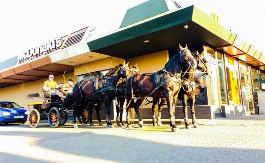 Bryczka z czterema końmi w McDrive Racibórz