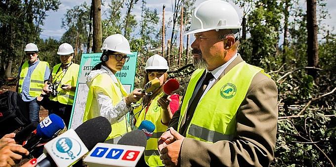 Sprzątanie lasów potrwa nawet 2 lata